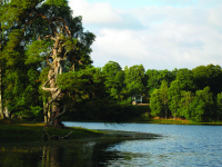 Loch Monzievaird Self Catering Holiday Cottages, Perthshire, Scotland